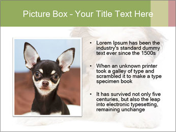 0000079702 PowerPoint Templates - Slide 13