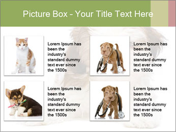 0000079702 PowerPoint Template - Slide 14
