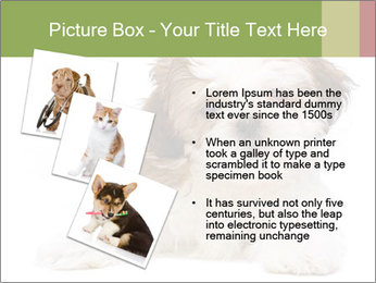 0000079702 PowerPoint Template - Slide 17