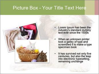 0000079702 PowerPoint Templates - Slide 20