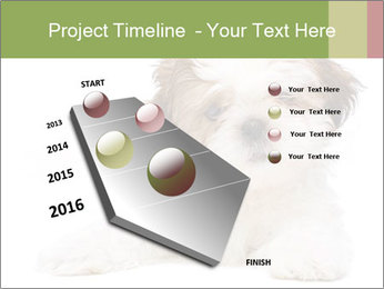 0000079702 PowerPoint Template - Slide 26