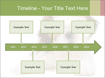 0000079702 PowerPoint Template - Slide 28