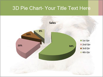 0000079702 PowerPoint Template - Slide 35