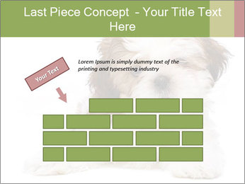 0000079702 PowerPoint Template - Slide 46