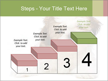 0000079702 PowerPoint Template - Slide 64