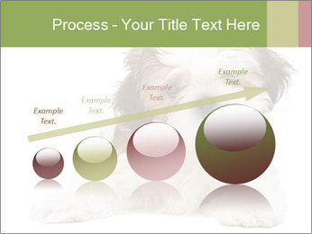 0000079702 PowerPoint Template - Slide 87