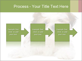 0000079702 PowerPoint Template - Slide 88