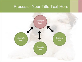 0000079702 PowerPoint Template - Slide 91