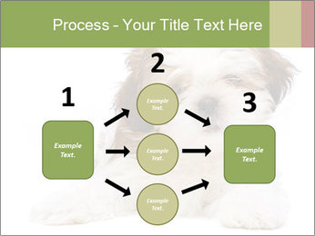 0000079702 PowerPoint Template - Slide 92