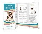 0000079704 Brochure Templates