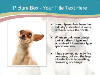 0000079704 PowerPoint Templates - Slide 13