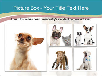 0000079704 PowerPoint Templates - Slide 19