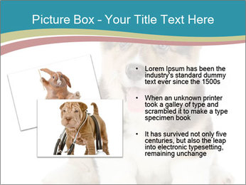0000079704 PowerPoint Templates - Slide 20