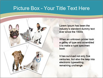 0000079704 PowerPoint Templates - Slide 23