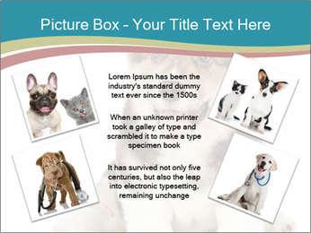 0000079704 PowerPoint Templates - Slide 24