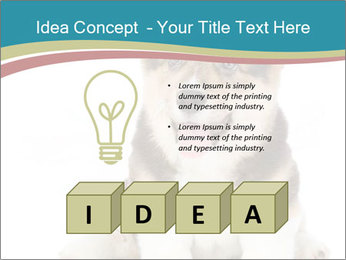 0000079704 PowerPoint Templates - Slide 80