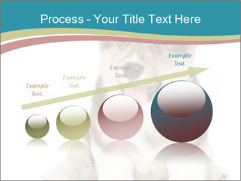 0000079704 PowerPoint Templates - Slide 87