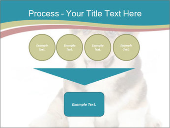 0000079704 PowerPoint Templates - Slide 93
