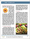0000079706 Word Templates - Page 3