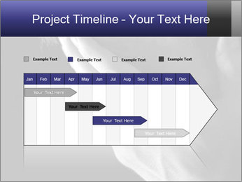 0000079708 PowerPoint Template - Slide 25