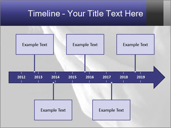 0000079708 PowerPoint Template - Slide 28