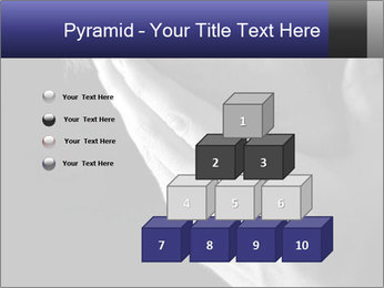 0000079708 PowerPoint Template - Slide 31
