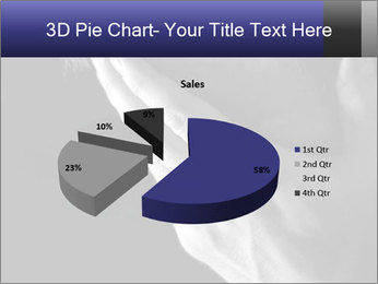 0000079708 PowerPoint Template - Slide 35