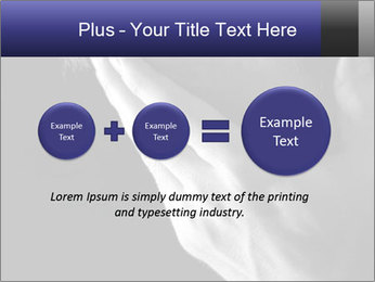 0000079708 PowerPoint Template - Slide 75