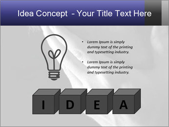 0000079708 PowerPoint Template - Slide 80