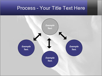 0000079708 PowerPoint Template - Slide 91