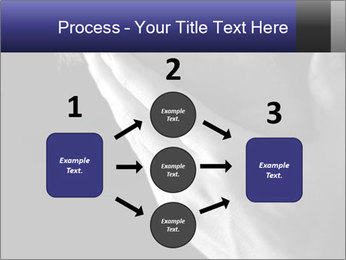 0000079708 PowerPoint Template - Slide 92