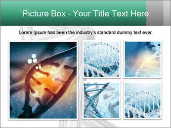 0000079709 PowerPoint Template - Slide 19