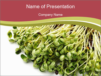 0000079718 PowerPoint Templates - Slide 1