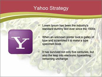 0000079718 PowerPoint Templates - Slide 11
