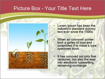 0000079718 PowerPoint Templates - Slide 13