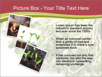 0000079718 PowerPoint Templates - Slide 17