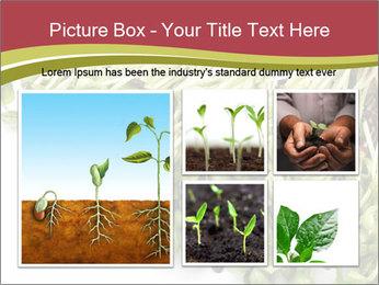 0000079718 PowerPoint Templates - Slide 19