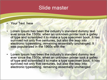 0000079718 PowerPoint Templates - Slide 2