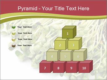 0000079718 PowerPoint Templates - Slide 31