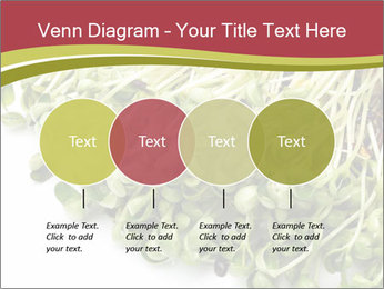 0000079718 PowerPoint Templates - Slide 32