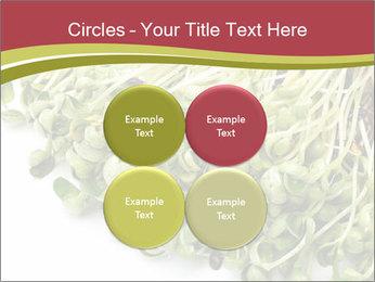 0000079718 PowerPoint Templates - Slide 38