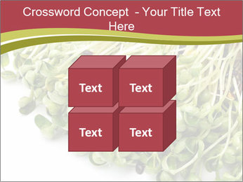 0000079718 PowerPoint Templates - Slide 39