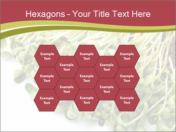 0000079718 PowerPoint Templates - Slide 44