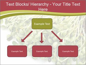 0000079718 PowerPoint Templates - Slide 69
