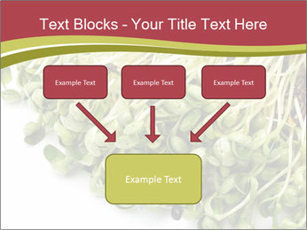 0000079718 PowerPoint Templates - Slide 70