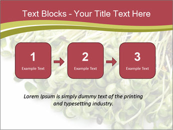 0000079718 PowerPoint Templates - Slide 71