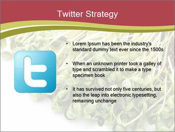 0000079718 PowerPoint Templates - Slide 9
