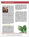 0000079718 Word Template - Page 3