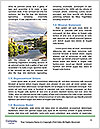 0000079720 Word Templates - Page 4