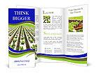 0000079724 Brochure Template